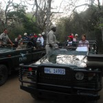 Africa Wildlife Conservation Jeeps