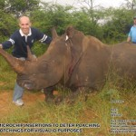 Africa Wildlife Conservation Rhino 2