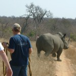Africa Wildlife Conservation Rhino 5