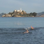 Alcatraz Swim - View from water