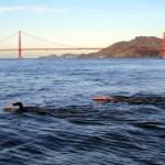 Alcatraz Swim 2