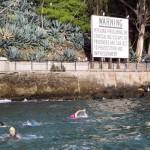 Alcatraz Swim 6