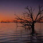 Menindee Sunrise