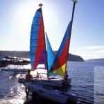 Sydney Yachting